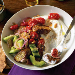Roasted Eggplant and Tomatoes with Tangy Cucumbers and Yogurt
